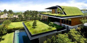 green roofing in denver