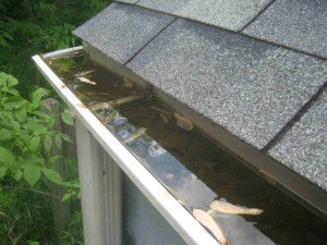 gutter cleaning services tips
