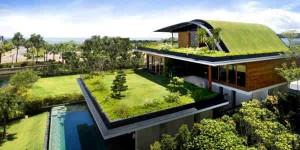 green roofing in denver