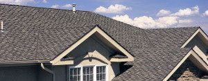 roofing trivia
